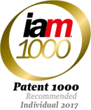Patent 1000 recommended individuals 2017