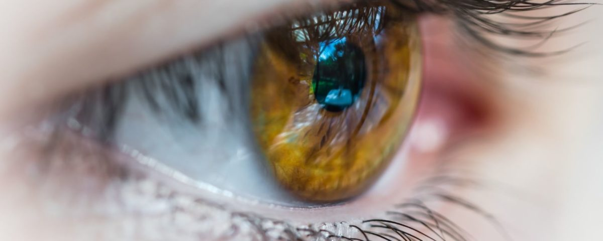 Macro (close-up) photo of a hazel coloured human eye, eyelashes, and eyelid.