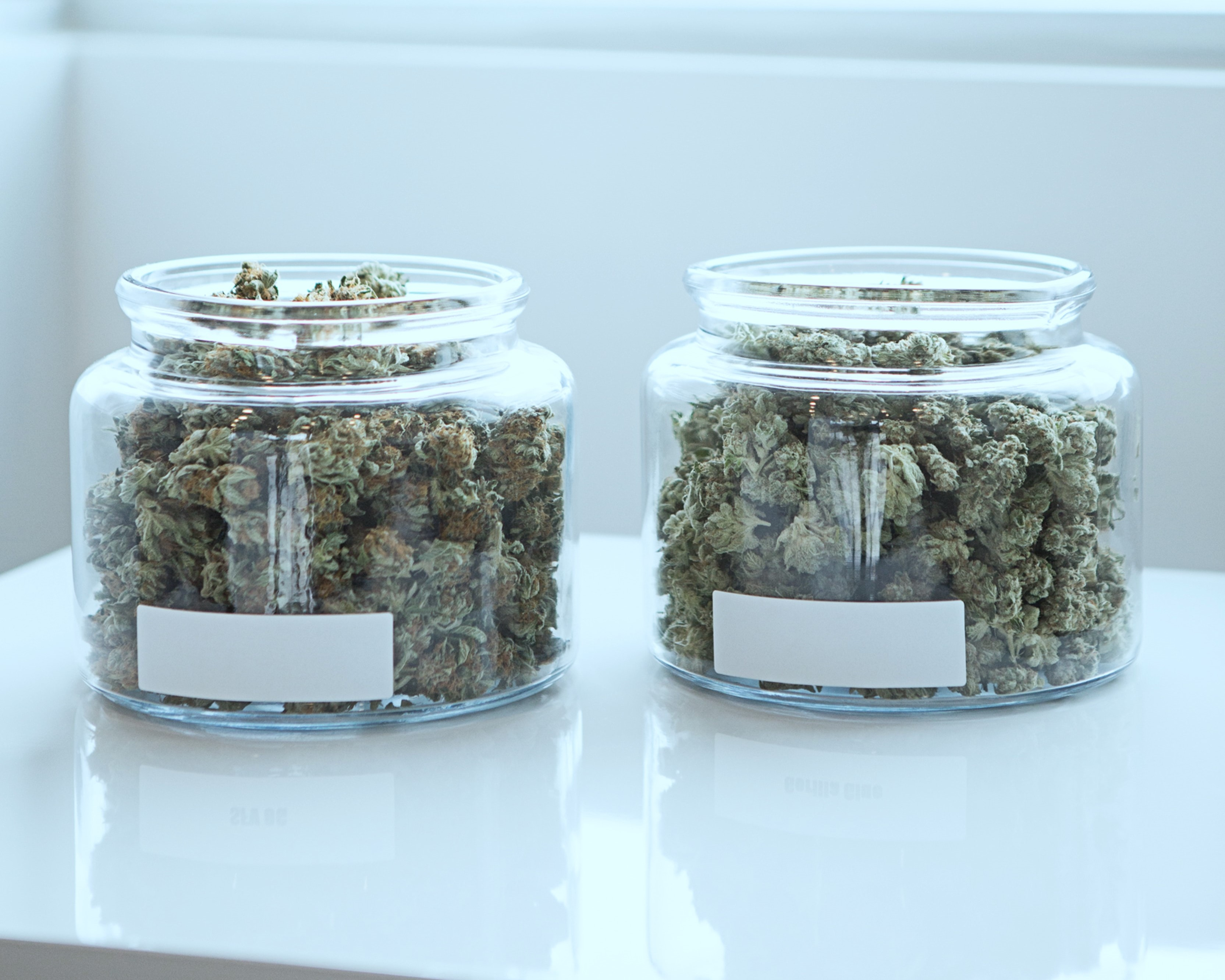 Photo of two jars of weed for sale in a cannabis store.